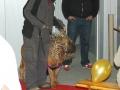 KleinMr. Cool und Mr. Der Hut will nicht sitzen!-09