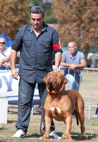 Top Bearbeitet14.09.2014  Frankreich -9775